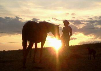sunset_horse_human